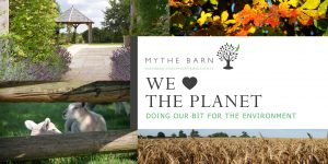 Read more about the article Sustainability and the Environment at Mythe Barn